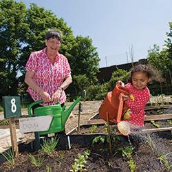 Get Going Garden Scheme